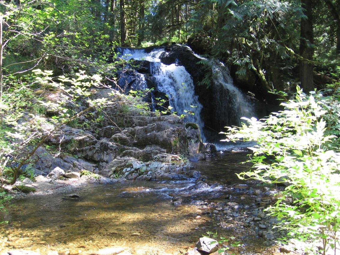 http://leebeavington.com/images/photos/fullsize/forest_falls-full.JPG