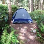 Hollyhock Campsite