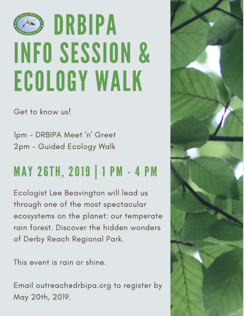 Ecology Walk May 2019