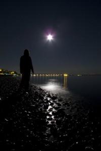 """Moonlit Wonder"""